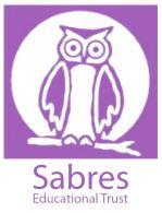 sabres logo